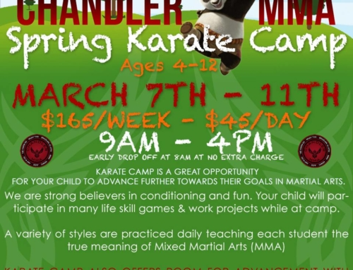 Spring Karate Camp 2016