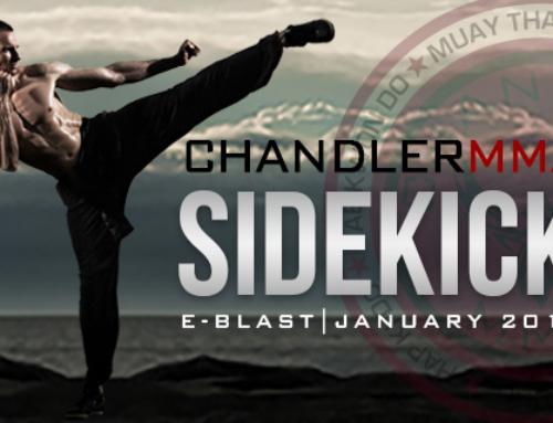 Sidekick January 2018