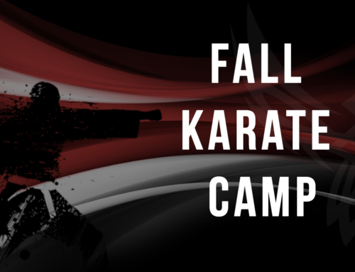 Fall Karate Camp